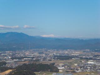 hatofukitsugao12.jpg