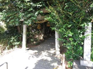 kamiishimaki1.jpg