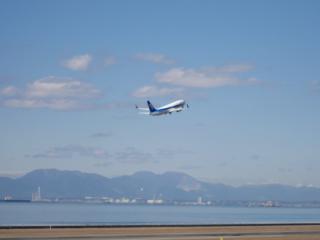 airplane4.jpg