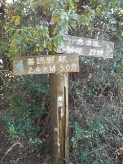 hatofukitsugao17.jpg