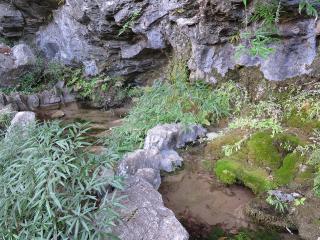 kamiishimaki41.jpg