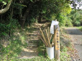 kichijou6.jpg