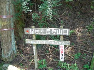 shakujou6.jpg